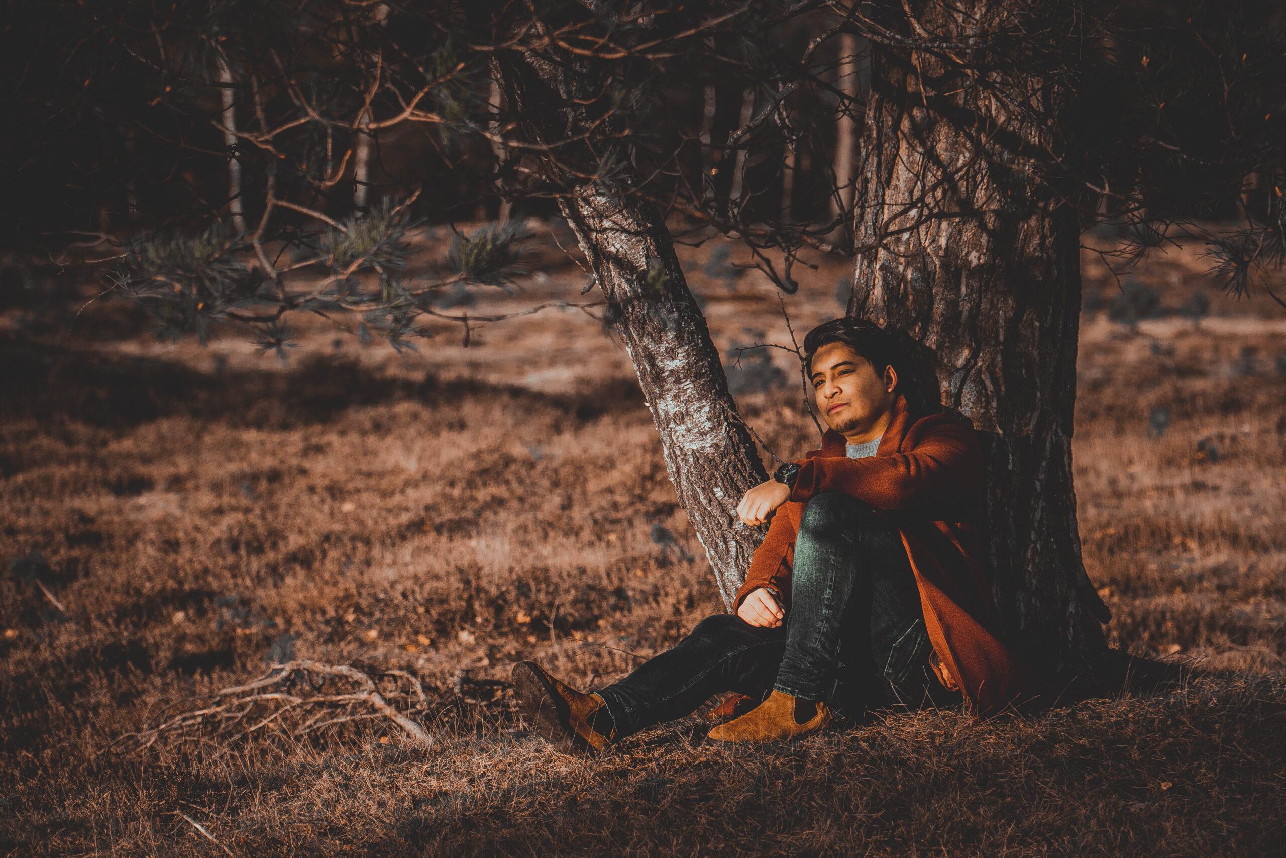 Fians Tree - Moorredia